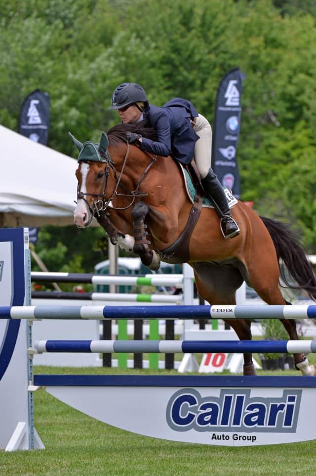 The Ox Ridge Hunt Club's 83rd annual Charity Horse Show was a big success, organizers said.