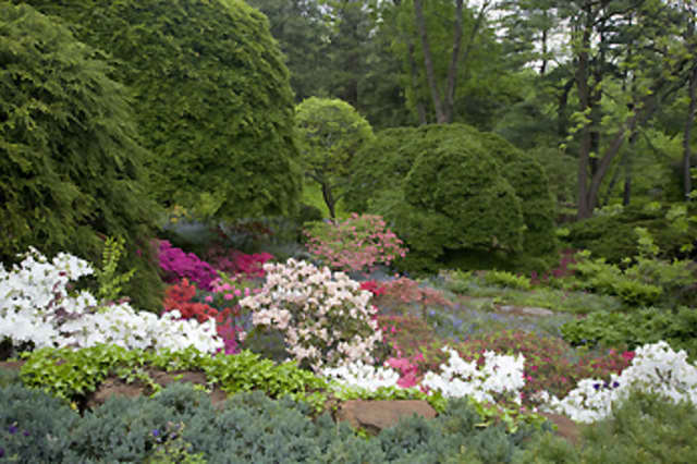 Come stroll through Rocky Hills — The Garden of William and Henriette Suhr from noon to 4 p.m. Oct. 19.