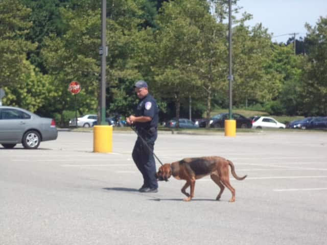 State Police searched for a man wanted in the reported robbery at the Cortlandt Town Center in Mohegan Lake this week.