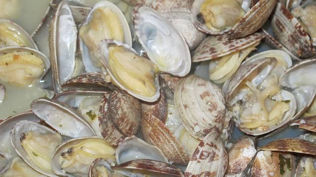 Raw or undercooked shellfish have been implicated as the source of a number of illnesses related to the naturally occurring bacterium Vibrio parahaemolyticus.