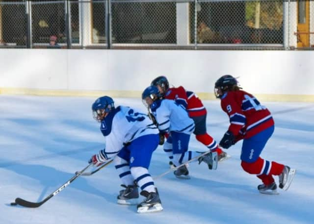 The Pelham Youth Hockey Association hopes to slow the rate of concussions in hockey with a coaches seminar on Sept. 11.