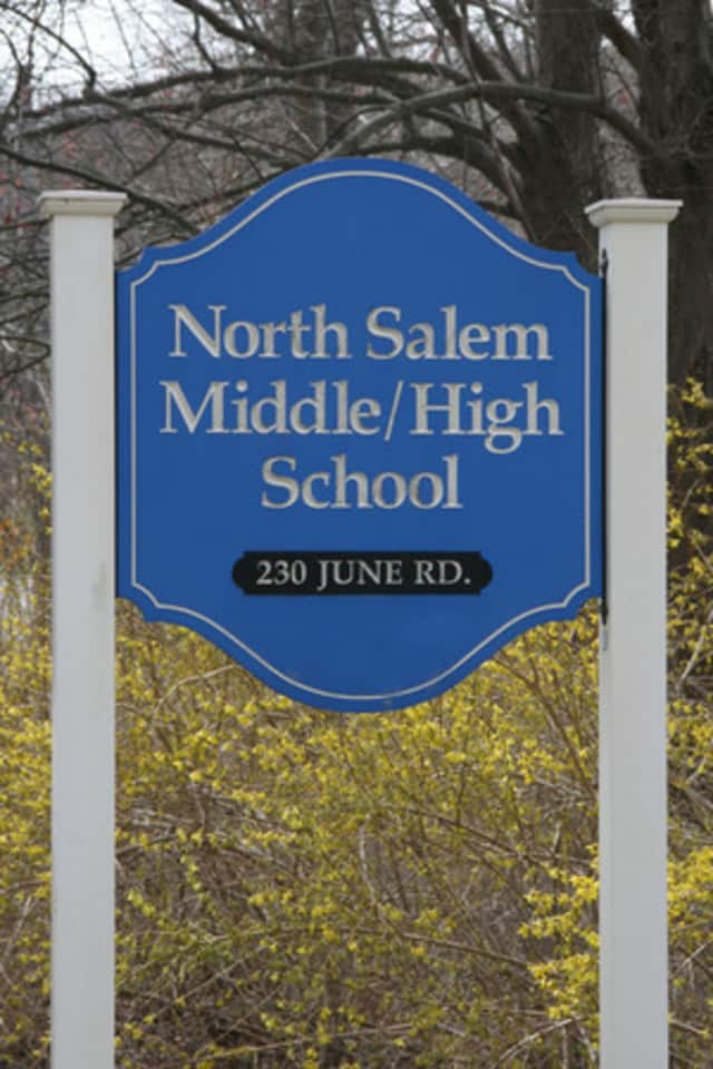The North Salem School District performed better on the math and English Language Arts test than the state average in most categories.
