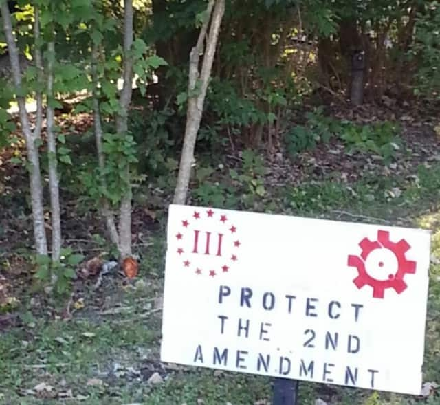 "TheBlaze reported Monday night that Jon Gibson, of Lake Lincolndale, was ""fed-up after his pro-gun sign was removed from his front yard for a third time."""