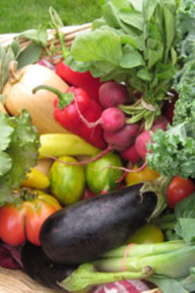 John F. Kennedy School garden donates produce to Carver Center Food Pantry.