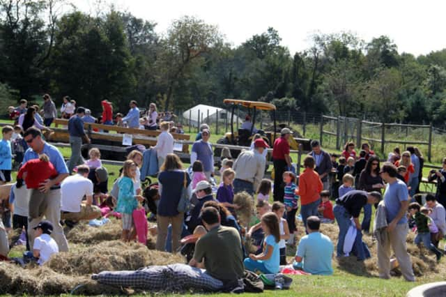 Scarecrow making is one of several activities families can participate in during the 13th annual Ambler Farm Day in Wilton.
