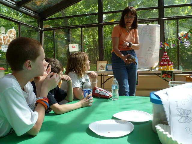 The Rye Nature Center has a number of activities for children in the coming weeks.