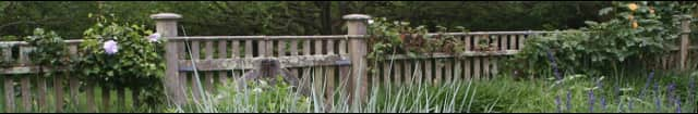 """The Wilton Garden Club is accepting submissions for its """"Wilton Walks"""" photography contest."""