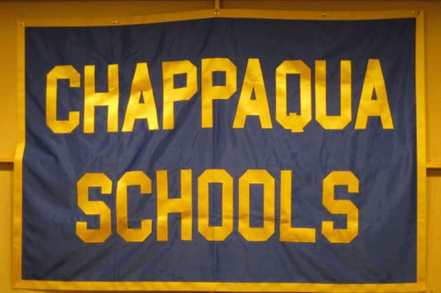 Bee' A Part Of Chappaqua Spelling Bee | Chappaqua Daily Voice