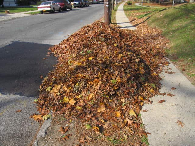 The Town of Harrison will begin curbside leaf pickup beginning Tuesday, Oct. 15.