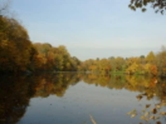 The Sheldrake Environmental Center is having its 2013 Fall Festival on Oct. 20