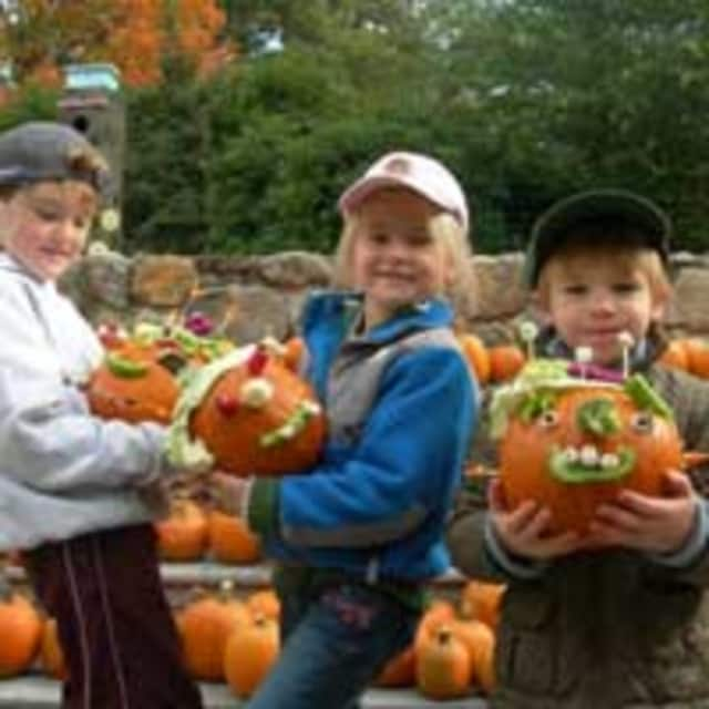 Pumpkin decorating is just one of many events at the The New Canaan Nature Center's annual Fall Fair.