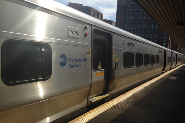 Metro North trains have temporarily slowed down in Eastchester due to a drainage problem on some of the tracks.