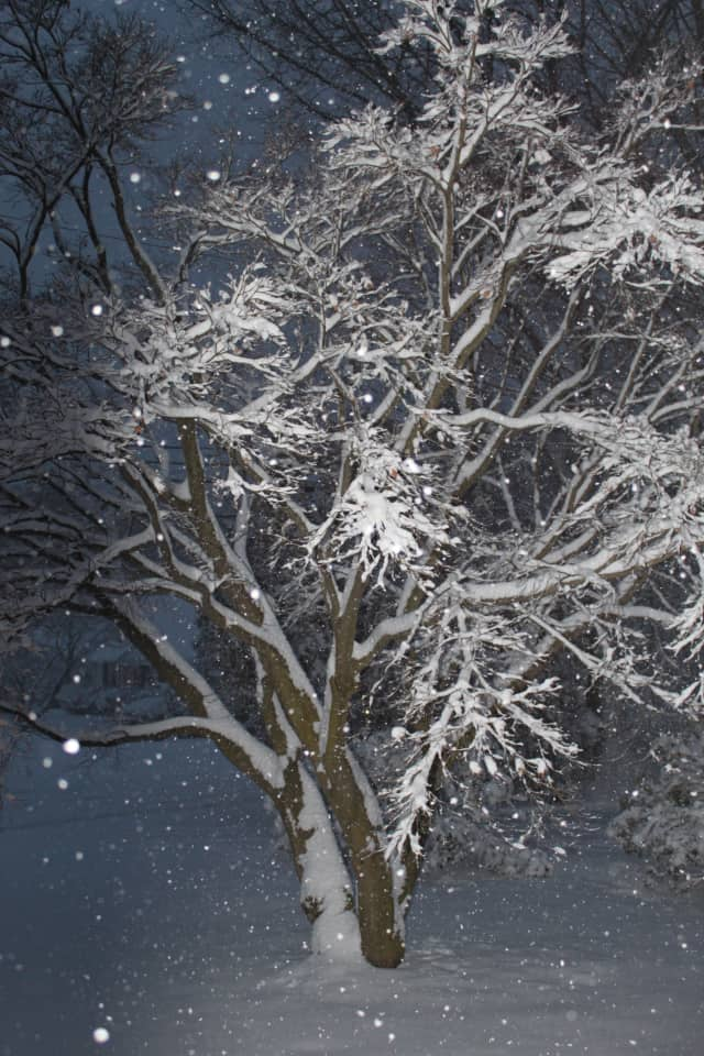 Overnight snow is possible across Fairfield County.