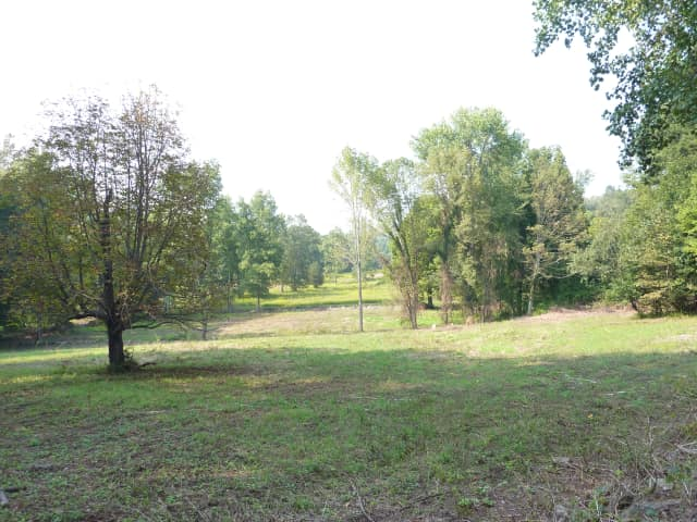 Wilton voters can weigh in on the town's proposed purchase of conservation easement for a 39-acre parcel of land.