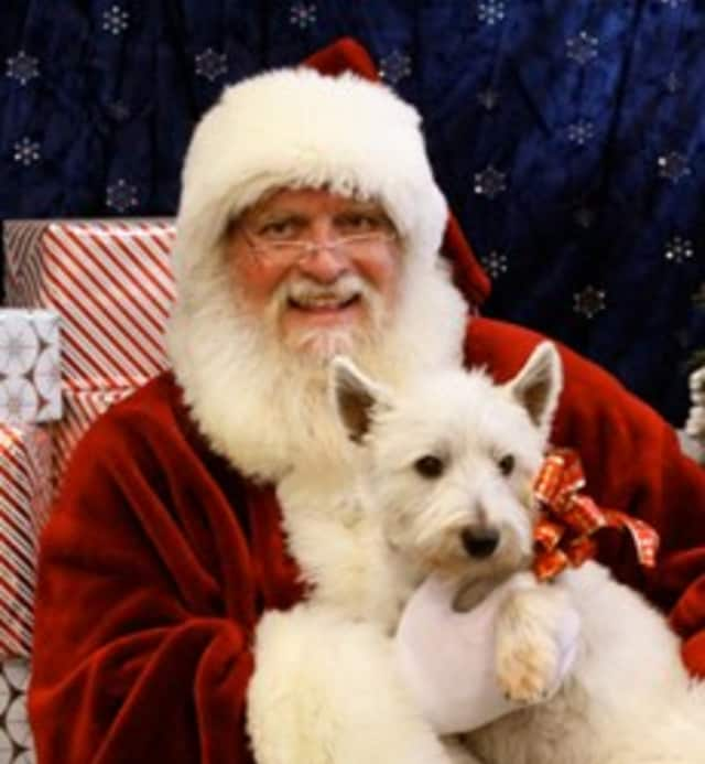"""The Danbury Welfare Society and the Canine Company are teaming up for """"Santa Paws for DAWS"""" on Saturday, Dec. 7 in Wilton."""