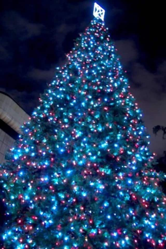 Elmsford's Tree Lighting is set for tonight.