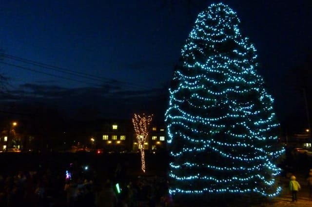 Westport will hold its annual Tree Lighting ceremony at Town Hall on Friday