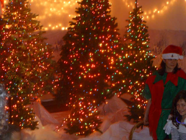 The Hastings Christmas tree was lighted indoors at the James Harmon Community Center.