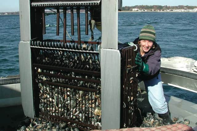 A Quick Grant will help the Bruce Museum with its three-part lecture series on oyster fishing in Long Island Sound.