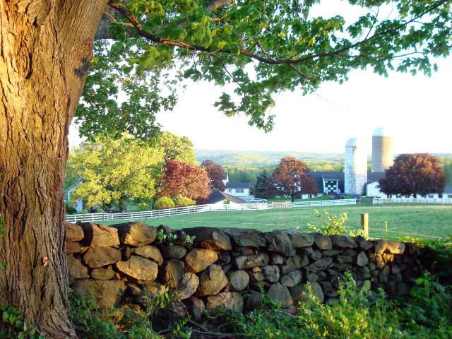 Yorktown's Hilltop Hanover Farm will host its third annual Farm Fest on May 28.