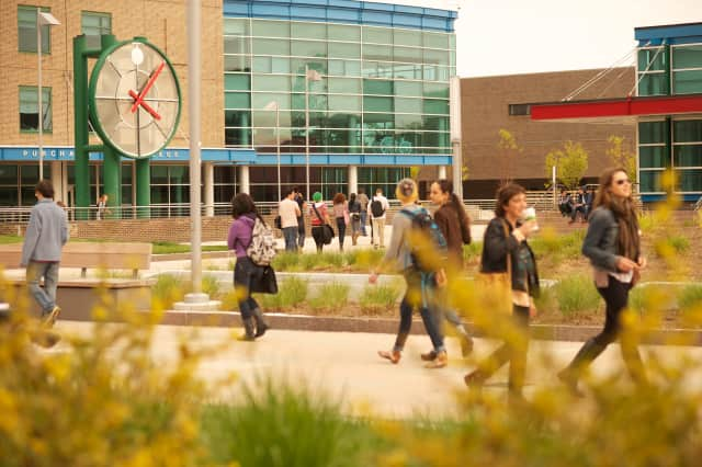 """Purchase College was named a """"Best Value"""" school by The Princeton Review."""