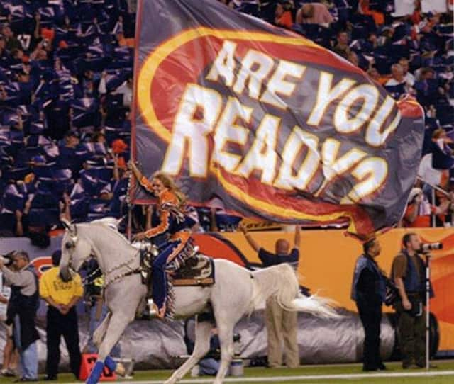 North Salem's Dutta Corp was tasked with transporting the Denver Broncos mascot Thunder to the area for the Super Bowl.