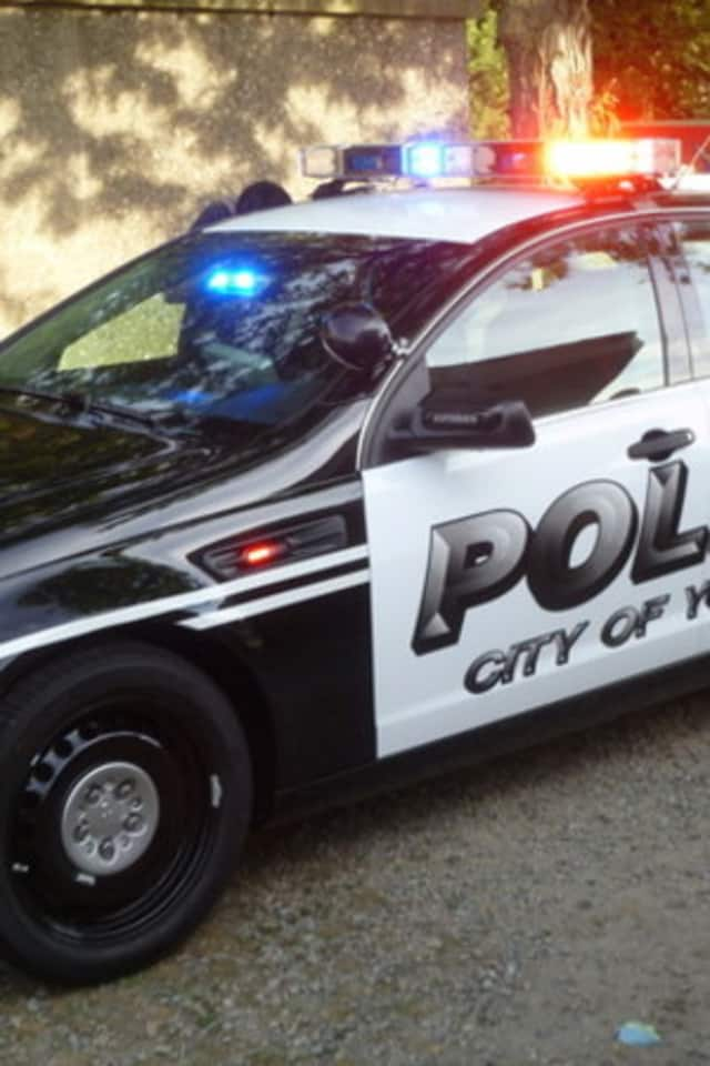 A Yonkers family dog was mauled by a pit pull at Secor Place Tuesday, April 15, according to a News 12 report.