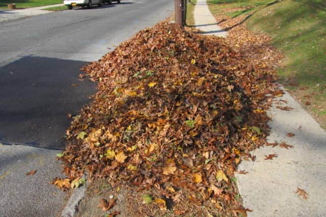 Stamford residents will have a second chance to have their fall leaves picked up this week by the city. To have them picked up, residents to need to contact the city.