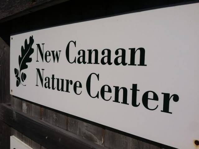 New Canaan will proclaim it Earth Day at noon Tuesday at the Visitor's Center at the Nature Center. It is located at 144 Oenoke Ridge.