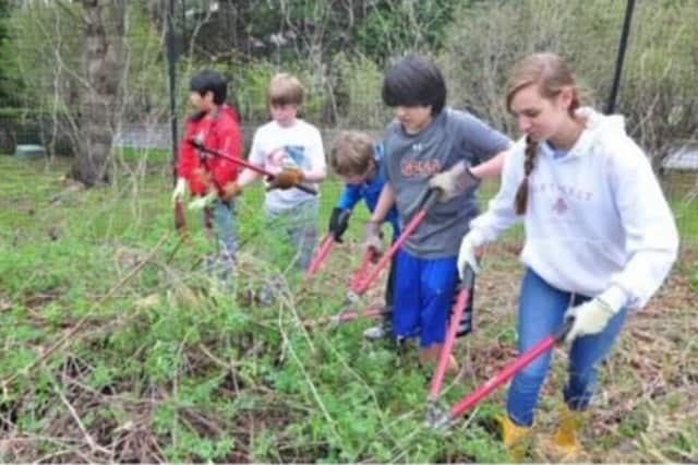 The Greenwich Land Trust is inviting residents to celebrate Earth Day.