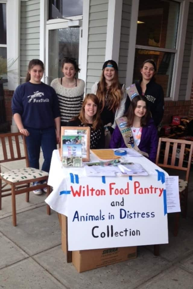 Members of Girls Scout Troop 50087 in Wilton collected donations for the food pantry and Animals In Distress Sunday at Stop and Shop.