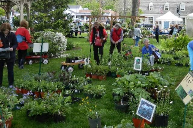 The Wilton Town Green is the site for the Wilton Garden Club's annual Mother's Day Plant Sale.