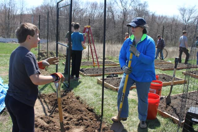 Adult volunteer Doni Wisdom, right, chats with Boy Scout Christopher Lanni as they work at Grace's Hill Farm, a new community garden at Our Saviour''s Lutheran Church in Fairfield.