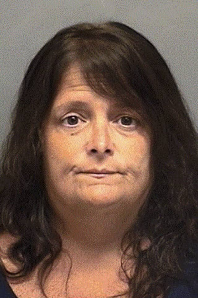 Cynthia Tanner, 54, of Darien pleaded guilty to embezzling nearly $800,000 from a veterans services organization.