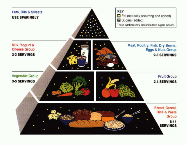 Saw Mill Club personal trainer John Wagner cites the importance of eating a balanced diet to maintain a healthy lifestyle and cites the use of the food pyramid.
