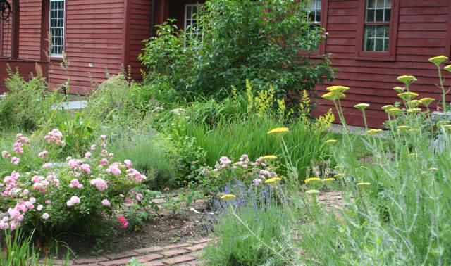 The Wilton Historical Society is celebrating a new colonial herb garden located at the Betts-Sturgis-Blackmar House by holding a wine and cheese party in the garden on Thursday, July 17 from 4-7 p.m. All are invited to attend.