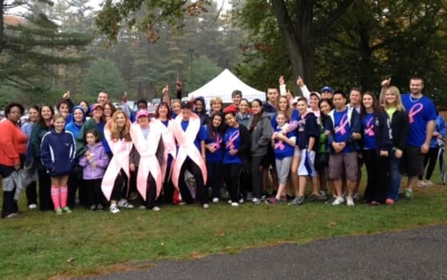 Members of the Hudson Valley Hospital Center Team at the 2013 Support-A-Walk