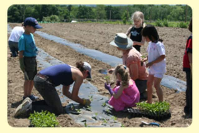 Something Good In The World, an environmental organization, received thousands in grants to fund environmental-educational projects for children.