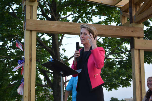 Zephyr Teachout is running for Congress in the 19th District.