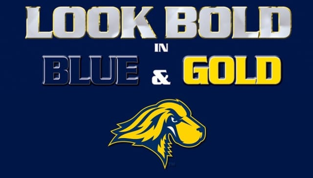 Celebrate Pace pride in blue and gold on Fridays at the university.