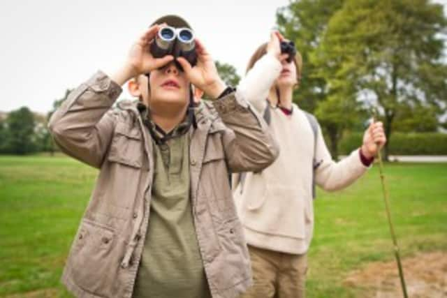 Bird watching is among events in Westchester parks.