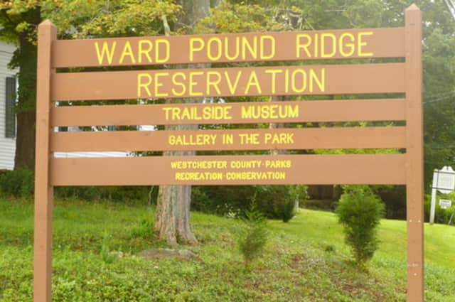 Ward Pound Ridge Reservation - home of the Trailside Museum