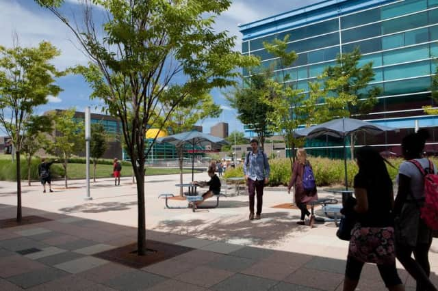 Purchase College-SUNY has been ranked high on many lists.
