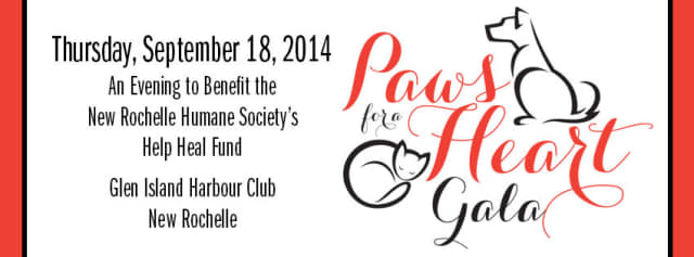 Online bidding for Paws for the Heart Gala has begun online.