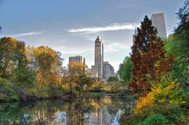 Central Park will play the host to a massive post-COVID concert this summer.