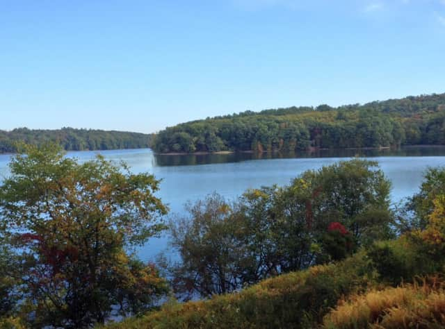 The Hudson to Housatonic Conservation Initiative (H2H) is connecting New York and Connecticut in wildlife conservation efforts.