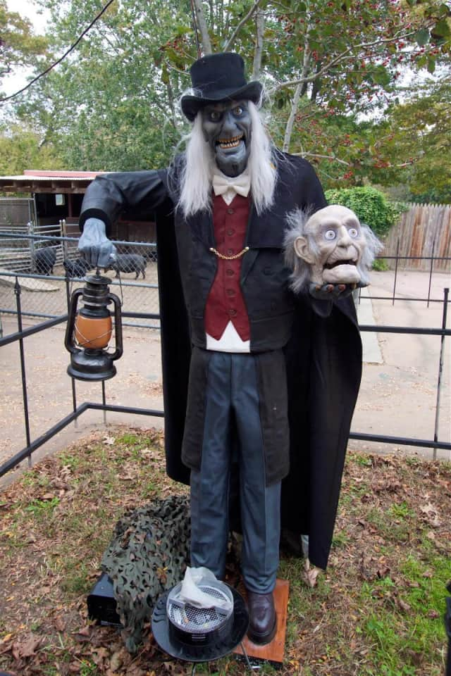 "Prepare to be scared with a ""Howl Ghoul"" from Beardsley Zoo's annual Howl-O-Ween event."