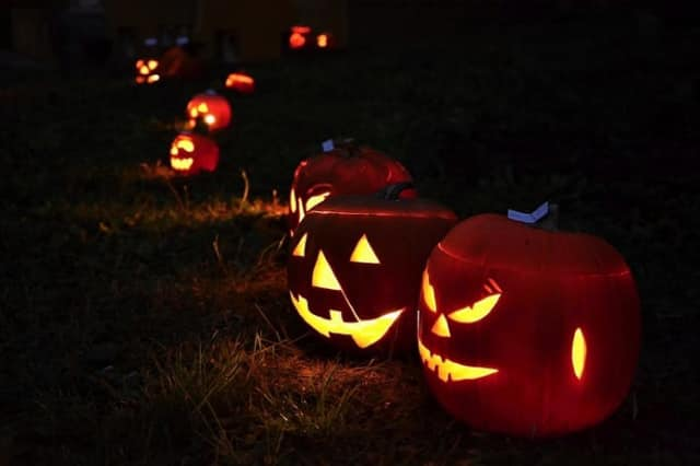 The Wilton Newcomers Club is hosting an adult-only Halloween bash on Saturday, Oct. 25, at 8 p.m.