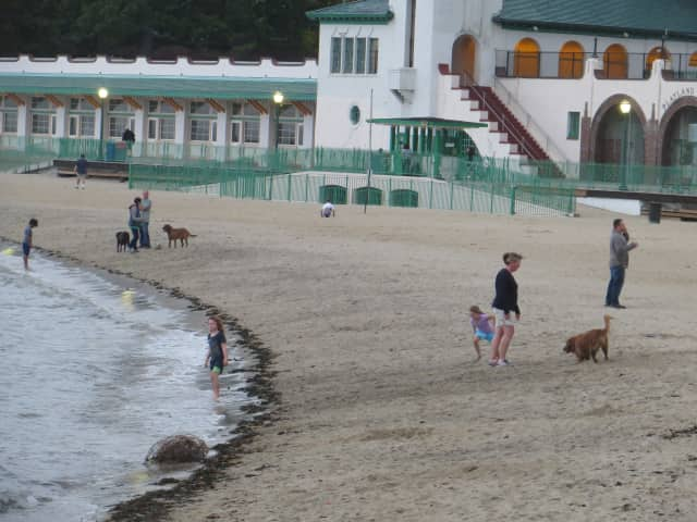 Gov. Andrews Cuomo proposes a tunnel across Long Island Sound to Westchester, but where will it land. Here is a photo of Rye Playland's waterfront beach.