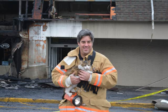 Former Mahopac Volunteer Fire Department Treasurer Michael Klein, pictured in 2014 while retrieving a cat named Daisy from a store fire. Klein is accused of embezzling $5.7 million in fire department funds over a period of more than a decade.